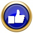 Thumb up icon — Stock Photo