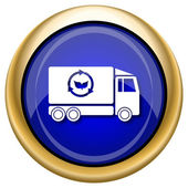 Eco truck icon — Stock fotografie