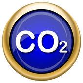 CO2 icon — Stock Photo