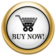 Stock Photo: Buy now shopping cart icon