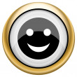 Foto de Stock  : Smiley icon