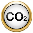 CO2 icon — Foto Stock