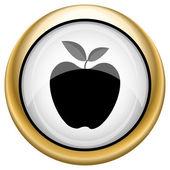 Apple icon — Стоковое фото