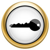 Key icon — Foto Stock