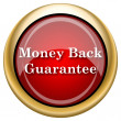 Money back guarantee icon — Stock Photo #33759915