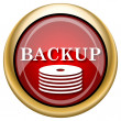 Back-up icon — Stock Photo #33760193