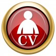 Stock Photo: CV icon