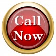 Stock Photo: Call now icon