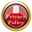 Privacy policy icon — 图库照片
