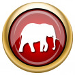 Stock Photo: Elephant icon