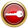 Stock Photo: Key icon
