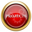 Projects icon — Stock Photo
