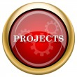 Stock Photo: Projects icon