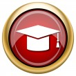 Stock Photo: Graduation icon