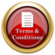 Stock Photo: Terms and conditions icon