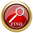 Find icon — Foto Stock #33763361