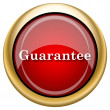 Stock Photo: Guarantee icon