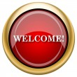 Foto de Stock  : Welcome icon
