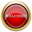 Stock Photo: Welcome icon
