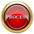 Foto de Stock  : Process icon