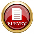 Stock Photo: Survey icon