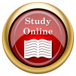 Stock Photo: Study online icon