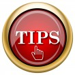 Foto de Stock  : Tips icon