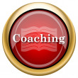 Foto de Stock  : Coaching icon