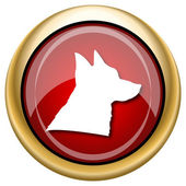 Dog icon — Stock fotografie