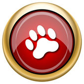 Paw print icon — Foto de Stock