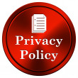 Privacy policy icon — Stock Photo #34302453