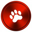 Stock Photo: Paw print icon