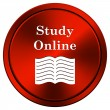 Study online icon — Stock Photo #34307831