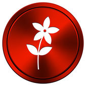 Flower icon — Stock Photo
