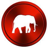 Elephant icon — Stock Photo