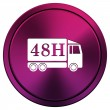 48u Levering vrachtwagen pictogram — Stockfoto #34517305