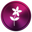 Stock Photo: Flower icon