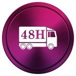 48u Levering vrachtwagen pictogram — Stockfoto #34517305