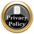 Privacy policy icon — Stock Photo #34728989