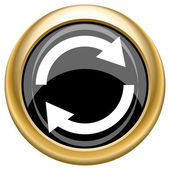 Reload two arrows icon — Stock Photo