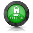 100 percent secure icon — Stock Photo