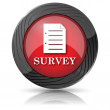Survey icon — Stock Photo