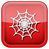 Icône de web d'araignée — Photo