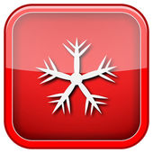 Snowflake icon — Foto de Stock
