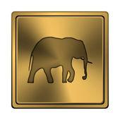 Elephant icon — Stockfoto