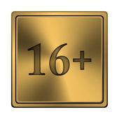 16 プラス記号のアイコン — ストック写真