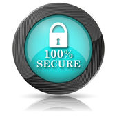 100 percent secure icon — Stockfoto