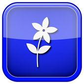 цветочный символ — Стоковое фото