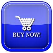 Buy now shopping cart icon — Stock Photo
