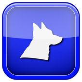 Köpek simgesi — Stok fotoğraf